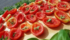 Tomatoes drying in sun Stock Photography