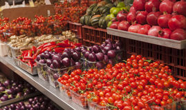 Tomatoes, eggplant and peppers on display at a farmer`s market. Vegetable background. Healthy eating. Royalty Free Stock Photo