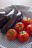 Tomatoes and eggplants Royalty Free Stock Images