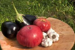 Tomatoes, eggplants and garlic Royalty Free Stock Photos
