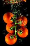 Tomatoes falling into water Royalty Free Stock Photo