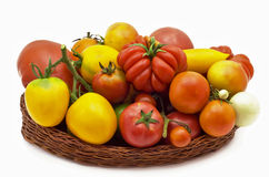 Tomatoes from farm Royalty Free Stock Photos