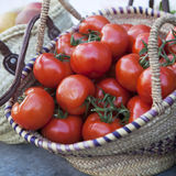 Tomatoes from farm Stock Photos