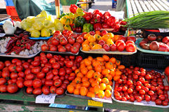 Tomatoes on a farm market. Red and yellow tomatoes on the stall Stock Photography