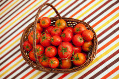 Tomatoes from the farm at the table Royalty Free Stock Photos