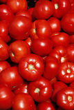 Tomatoes at farmer's market Royalty Free Stock Photography