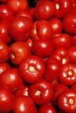 Tomatoes at farmer's market Royalty Free Stock Photography