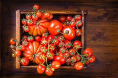 Tomatoes food background. Royalty Free Stock Image