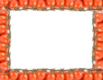 Tomatoes frame Stock Image