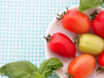 Tomatoes frame Royalty Free Stock Photos