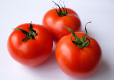 Tomatoes. Fresh tomatoes assures cooking healthy food Stock Images
