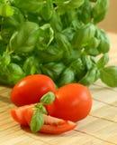 Tomatoes and fresh basil Stock Photo