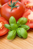 Tomatoes and fresh basil Royalty Free Stock Image