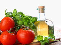 Tomatoes with fresh basil and olive oil Royalty Free Stock Image