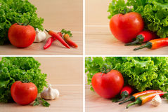 Tomatoes, fresh green salad with garlic and chilli Stock Image