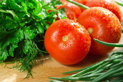 Tomatoes and fresh herbs. Tomatoes and greens on board Stock Image