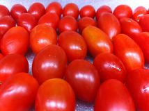 Tomatoes. Fresh red tomatoes Royalty Free Stock Photos