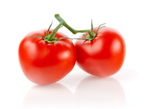 Tomatoes. Fresh Tomatoes on White Background Royalty Free Stock Image