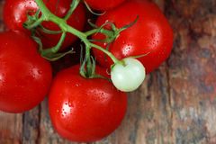 Tomatoes. Fresh tomatoes on wooden table Royalty Free Stock Images