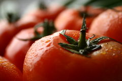 Tomatoes fruit. Depth of field fresh washed and wet tomatoes fruit royalty free stock image