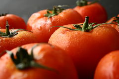 Tomatoes fruit. Bunch of fresh wet tomatoes fruits Stock Photo
