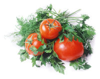 Tomatoes and garden-stuff isolated on white Royalty Free Stock Photos