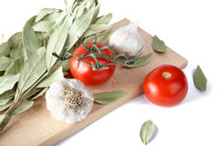 Tomatoes garlic and bay leaf branches Stock Images