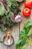 Tomatoes, garlic, sorrel and basil. Royalty Free Stock Images