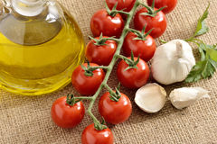Tomatoes, garlic, tomatoes, parsley and oil Royalty Free Stock Photos