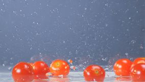 Tomatoes are getting dropped into a transparent container with some water at the bottom. 4K stock video footage