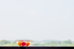 Tomatoes in Glass Bow of Water in Open Air Stock Images