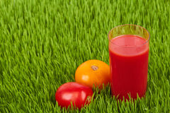Tomatoes and a glass of juice Stock Images