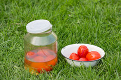 Tomatoes on the grass. Canned tomatoes on the grass in a bowl and jar Stock Photo