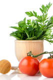 Tomatoes and green herb leafs Royalty Free Stock Photos