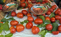 Tomatoes with green leaves Royalty Free Stock Image
