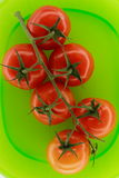 Tomatoes on green plate Royalty Free Stock Photos