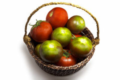 Tomatoes green and red Royalty Free Stock Photography