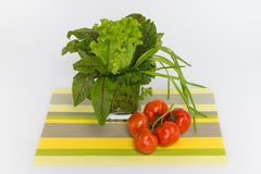 Tomatoes, green and red sorrel. Red sorrel, lettuce, onions, parsley and tomatoes on a striped napkin Royalty Free Stock Photography