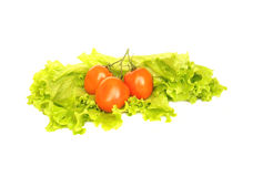 Tomatoes and green salad. On a white background Stock Image