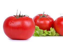 Tomatoes and green salad leafs on white Royalty Free Stock Images