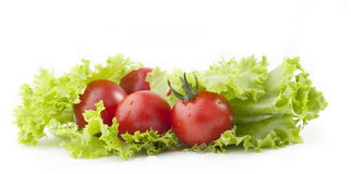 Tomatoes and green salad leaves Royalty Free Stock Images
