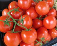 Tomatoes at the greengrocer Royalty Free Stock Photos