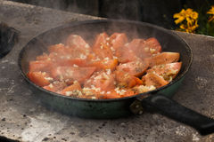 Tomatoes grilled over an open fire. With garlic and pepper Royalty Free Stock Photography