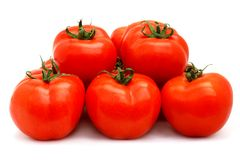 Tomatoes Group Royalty Free Stock Image