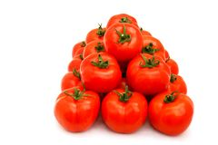 Tomatoes Group Royalty Free Stock Photography
