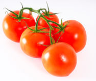 Tomatoes in group, with green stem Royalty Free Stock Photo