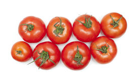 Tomatoes. Group of ripe red  tomatoes Stock Photography