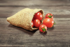 Tomatoes. In a gunny-bag Stock Images