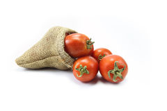 Tomatoes. In a gunny-bag Stock Photos