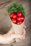 Tomatoes in the hand Stock Photography